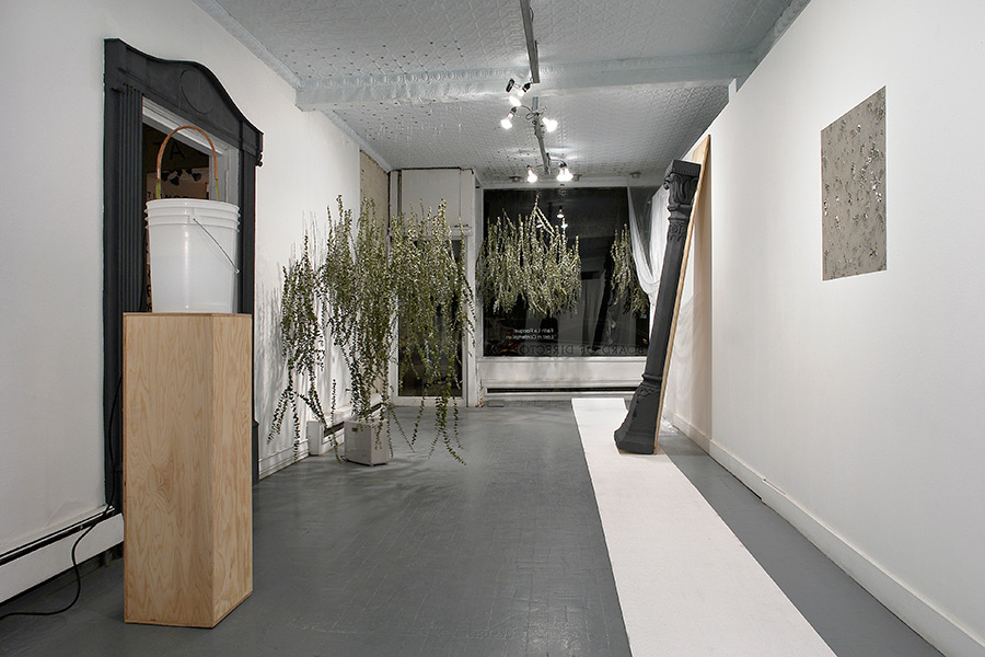 lost in contemplum